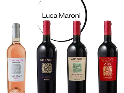 Great success of our WHY NOT? 15.0 wines at the tasting session by Luca Maroni!